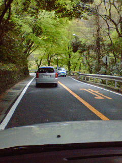 箱根は早くも新緑の季節