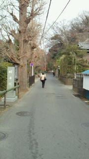 ちょこっと鎌倉散歩