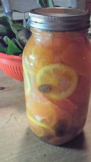 フルーツマリネ作ってみました