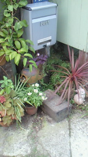 雨上がりにお庭仕事